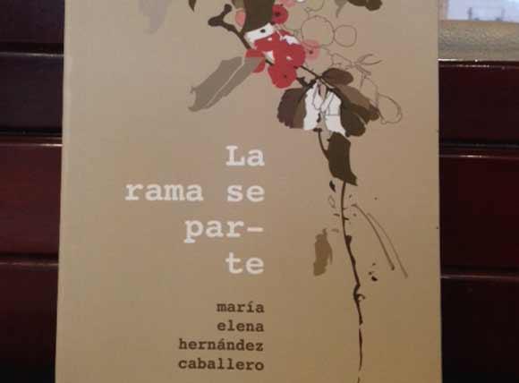 laramaseparte_g