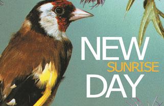 New Day presenta Sunrise