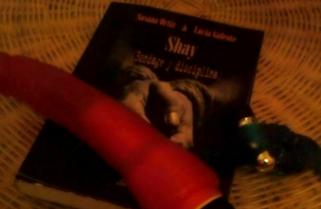 Shay (Bondage y disciplina) de Susana Ortiz y Lucia Galeote