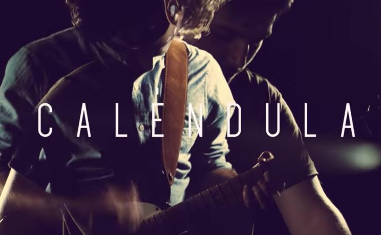 Caléndula, nuevo single de Gimnástica