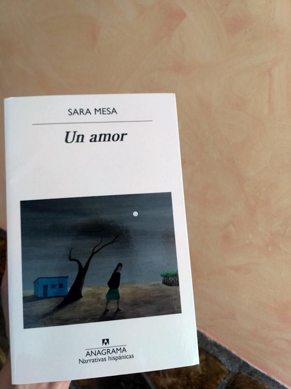 Un amor de Sara Mesa