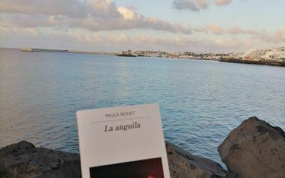 La anguila de Paula Bonet
